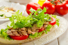 Tuna salad Royalty Free Stock Images