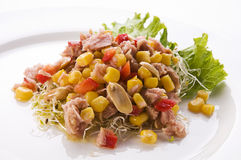 Tuna salad Stock Images