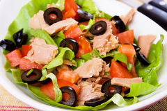 Tuna salad Stock Photography