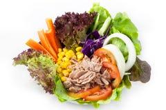 Tuna salad Stock Image