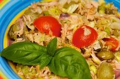 The tuna salad. The healthy food. Tuna salad on the table stock photography