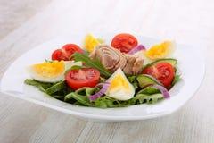 Tuna Salad Stock Photography