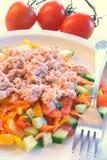 Tuna salad. Enjoying healthy and delicious tuna salad stock photography