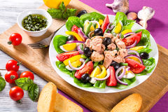 Tuna salad with anchovies, eggs, black olives, tomatoes, oil, basil, garlic, vinegar Stock Photography