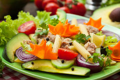 Tuna salad. With [asta, avocado and vegetables close up Royalty Free Stock Photo