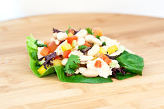 Tuna salad with beans Royalty Free Stock Images