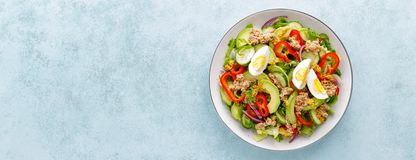 Tuna salad with boiled egg and fresh vegetables. Healthy diet food. Greek cuisine. Top view royalty free stock images