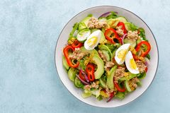 Tuna salad with boiled egg and fresh vegetables. Healthy diet food. Greek cuisine. Top view stock photos
