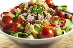 Tuna salad bowl Royalty Free Stock Image