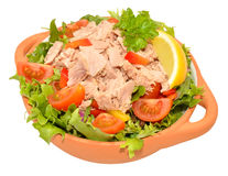 Free Tuna Salad Bowl Royalty Free Stock Photos - 52872468