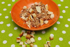 Tuna salad with bread croutons Royalty Free Stock Image