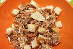 Tuna salad with bread croutons Stock Images