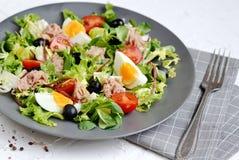 Tuna Salad Cabbage Arugula Oil Pepper Tomatoes Cherry Eggs royalty free stock photo