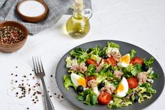 Tuna Salad Cabbage Arugula Oil Pepper Tomatoes Cherry Eggs royalty free stock images