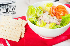 Tuna salad with crackers Royalty Free Stock Photos