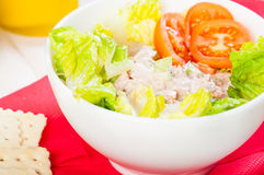 Tuna salad with crackers Stock Photos