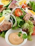 Tuna Salad And Dip Stock Image