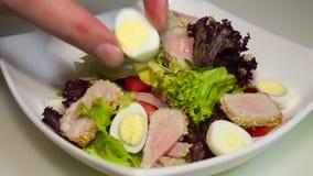 Tuna salad in the dish. Tuna salad in the white dish stock footage