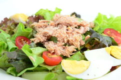 Tuna salad. Salad with tuna and egg Stock Image