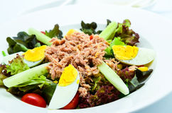 Tuna salad with eggs. Tuna salad served with eggs Stock Photo