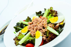 Tuna salad with eggs. Tuna salad served with eggs Stock Image