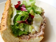 Tuna and salad in french bread Stock Photography