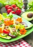 Tuna salad. Fresh healthy tuna salad with avocado and vegetables Royalty Free Stock Photo