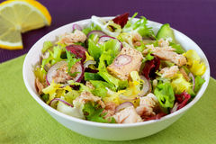 Tuna salad Royalty Free Stock Photography