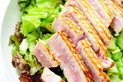Tuna salad with fresh tuna fillets Royalty Free Stock Photos