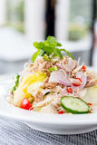 Tuna Salad with Fresh Vegetable Royalty Free Stock Images