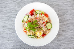 Tuna Salad with Fresh Vegetable Royalty Free Stock Photo
