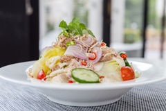 Tuna Salad with Fresh Vegetable Royalty Free Stock Photography