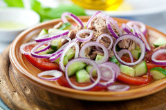 Tuna salad with fresh vegetables Royalty Free Stock Photos