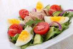 Tuna salad Stock Photos