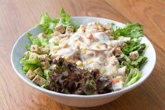 Tuna Salad With healthy Dressing. Tuna Salad With healthy Dressing Stock Photos