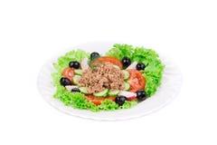 Tuna Salad. Royalty Free Stock Photos