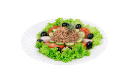 Tuna Salad. Stock Photos