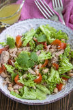 Tuna salad with lettuce, beans and bell pepper stock photo