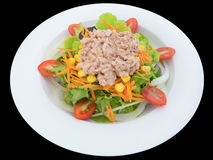 Tuna salad. With lettuce and tomatoes isolated on the black background with clipping path Stock Photo