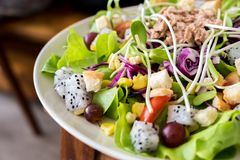 Tuna salad with lettuce and tomatoes stock images