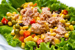 Tuna salad with mais Stock Images