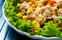 Tuna salad with mais on white shell dish Stock Photo