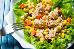Tuna salad with mais Royalty Free Stock Image