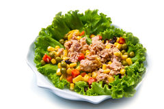 Tuna salad with mais Royalty Free Stock Photo
