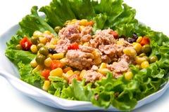 Tuna salad with mais Royalty Free Stock Image