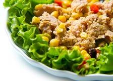Tuna salad with mais Stock Photography
