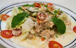 Tuna salad with mayonnaise. Decorating with mint, tomato and lettuce Stock Images
