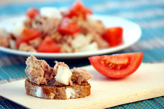 tuna salad with organic tomato Royalty Free Stock Images