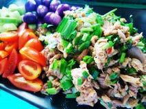 Tuna Salad piccante Fotografia Stock Libera da Diritti