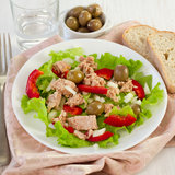 Tuna salad on the plate Royalty Free Stock Photo